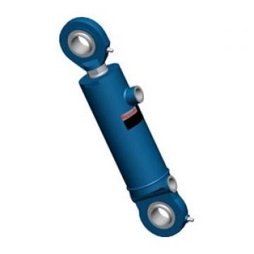 BOSCH Rexroth Hydraulique Cylindre 7472AG0395 Utilisé