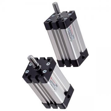 Vérin Double Effet 90/50 - 600 MM sans Fixation