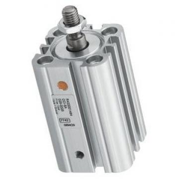 vérin pneumatique REXROTH Bosch 0822010726 air comprimé  ( VT176 ) ( VT324 )